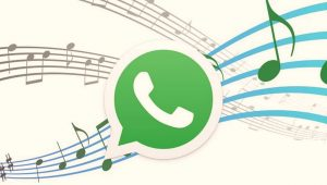 WhatsApp Extra Collaborations to Stop the Misuse 28