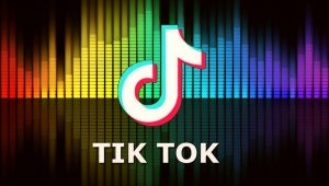 TikTok Suffers from a Design Malfunction 8